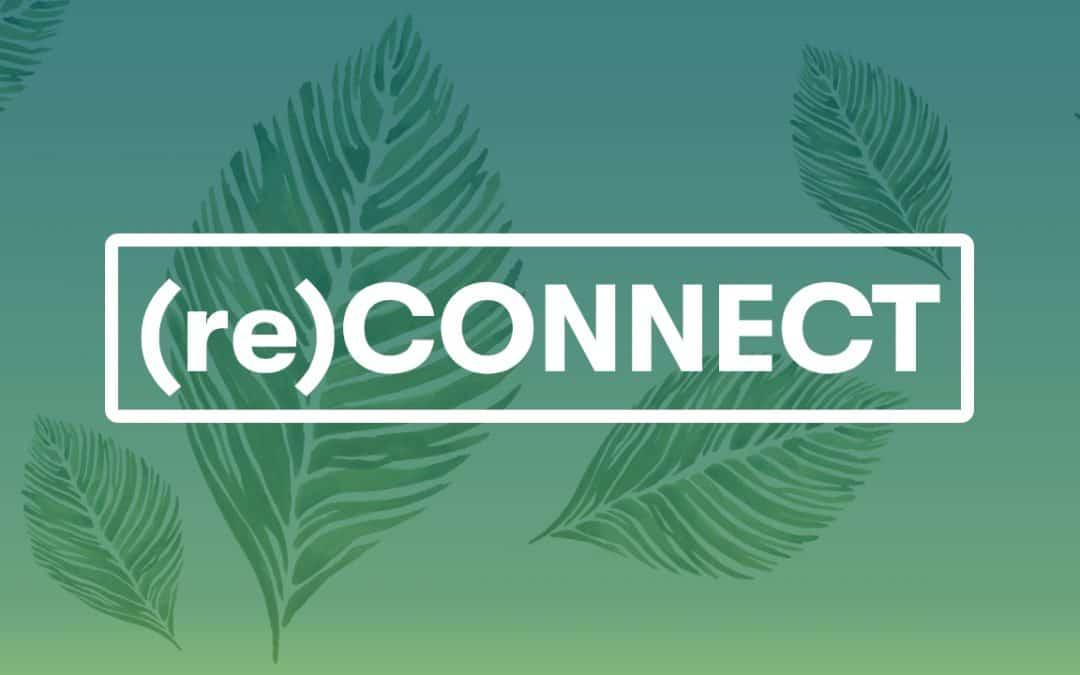Încă o săptămână plină de insights marca (re)Connect
