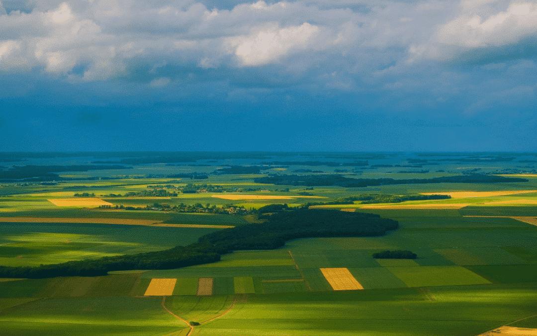 Ce este antreprenoriatul verde   Bune practici și oportunități