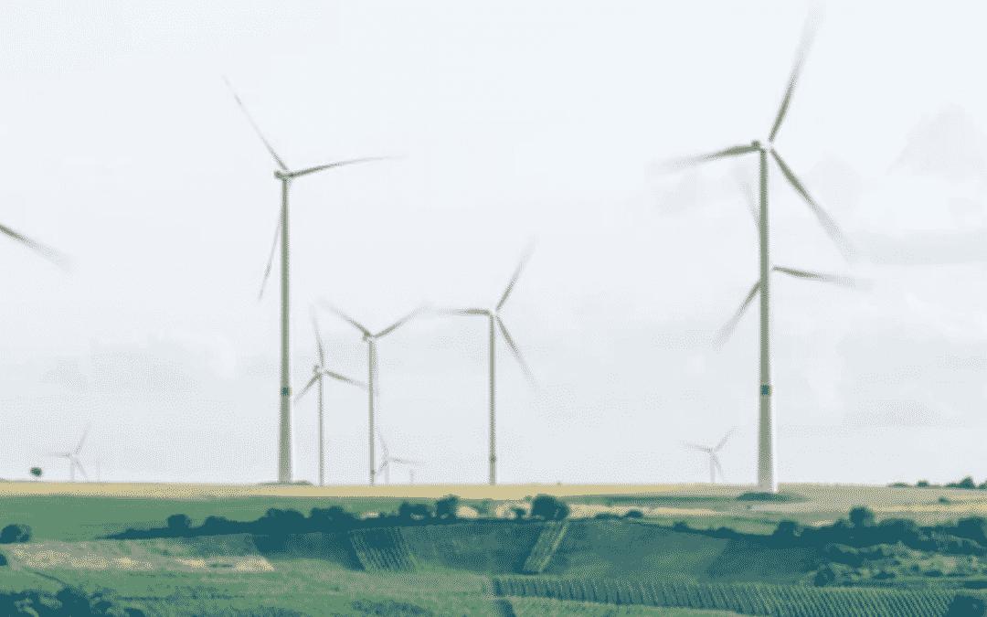 Programe și oportunități pentru antreprenorii cu soluții eco-inovatoare